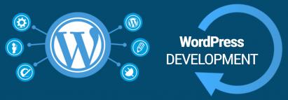 Web Development using Wordpress