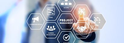 IT Project Management (PMBOK)